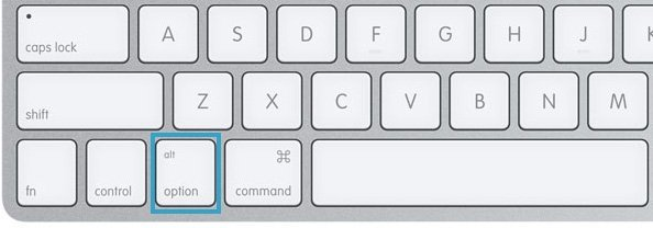 Alt/Option Key